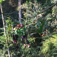 在清迈怎么玩丛林飞跃